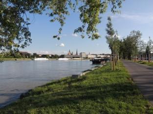 ドナウ川の川辺