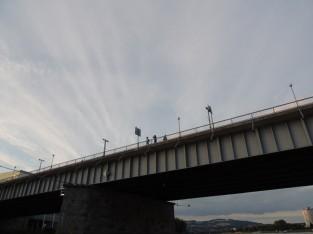 橋から観測する陸上チーム