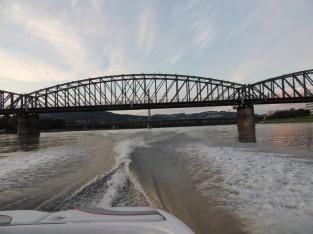 大きなドナウ川を疾走するボート